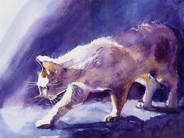 https://wallpaper.feodosia.net/media/_thumbs/wallpaper/cat/307433-2362x1831.jpg.600x450_q85_crop.jpg