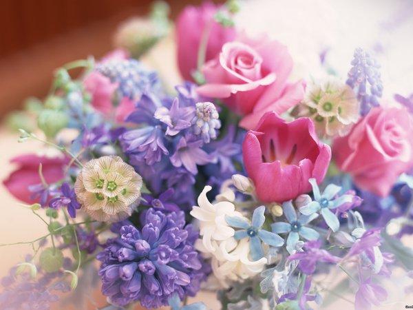 Букет много цветов фото