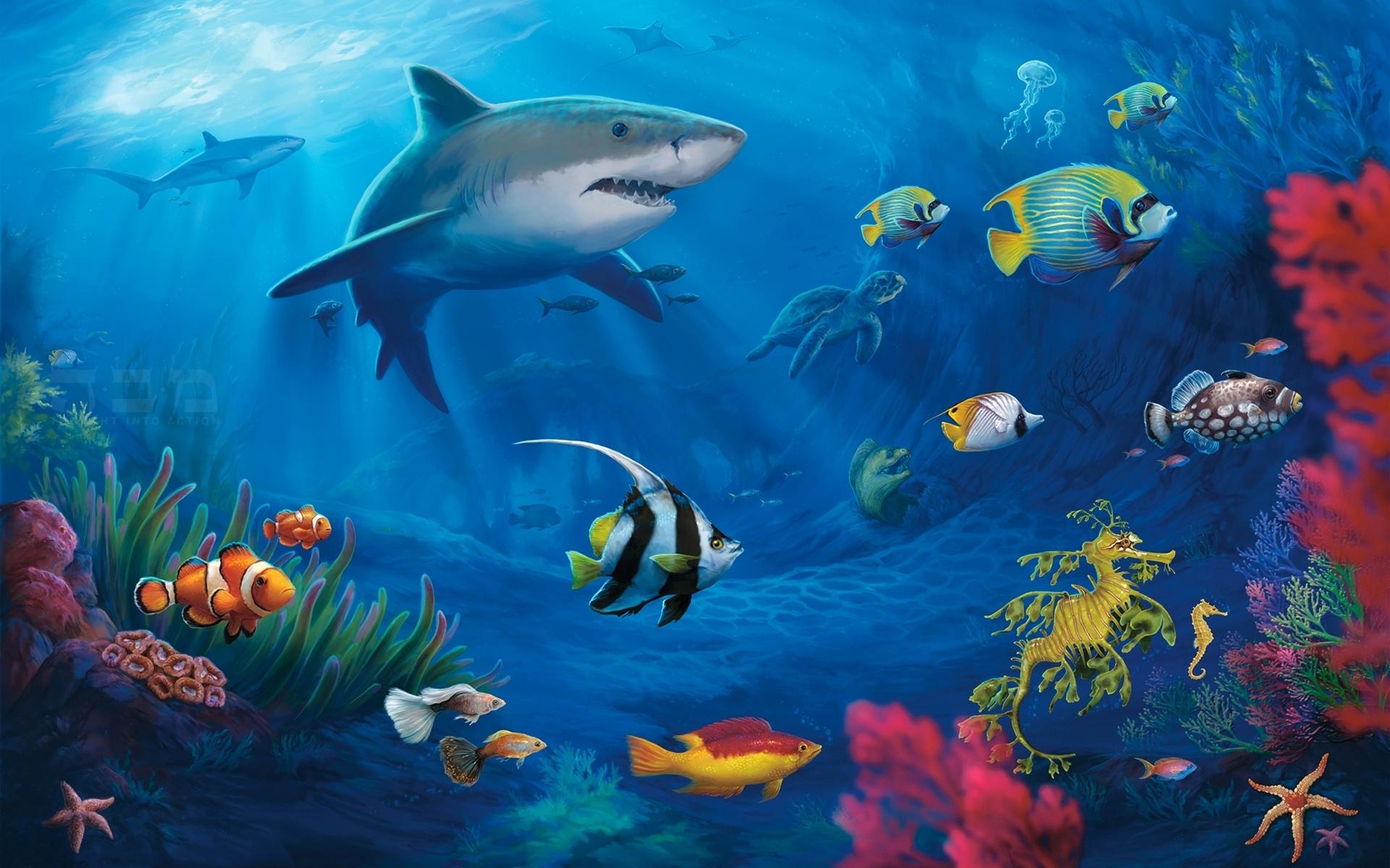 Яркие краски подводного мира без смс