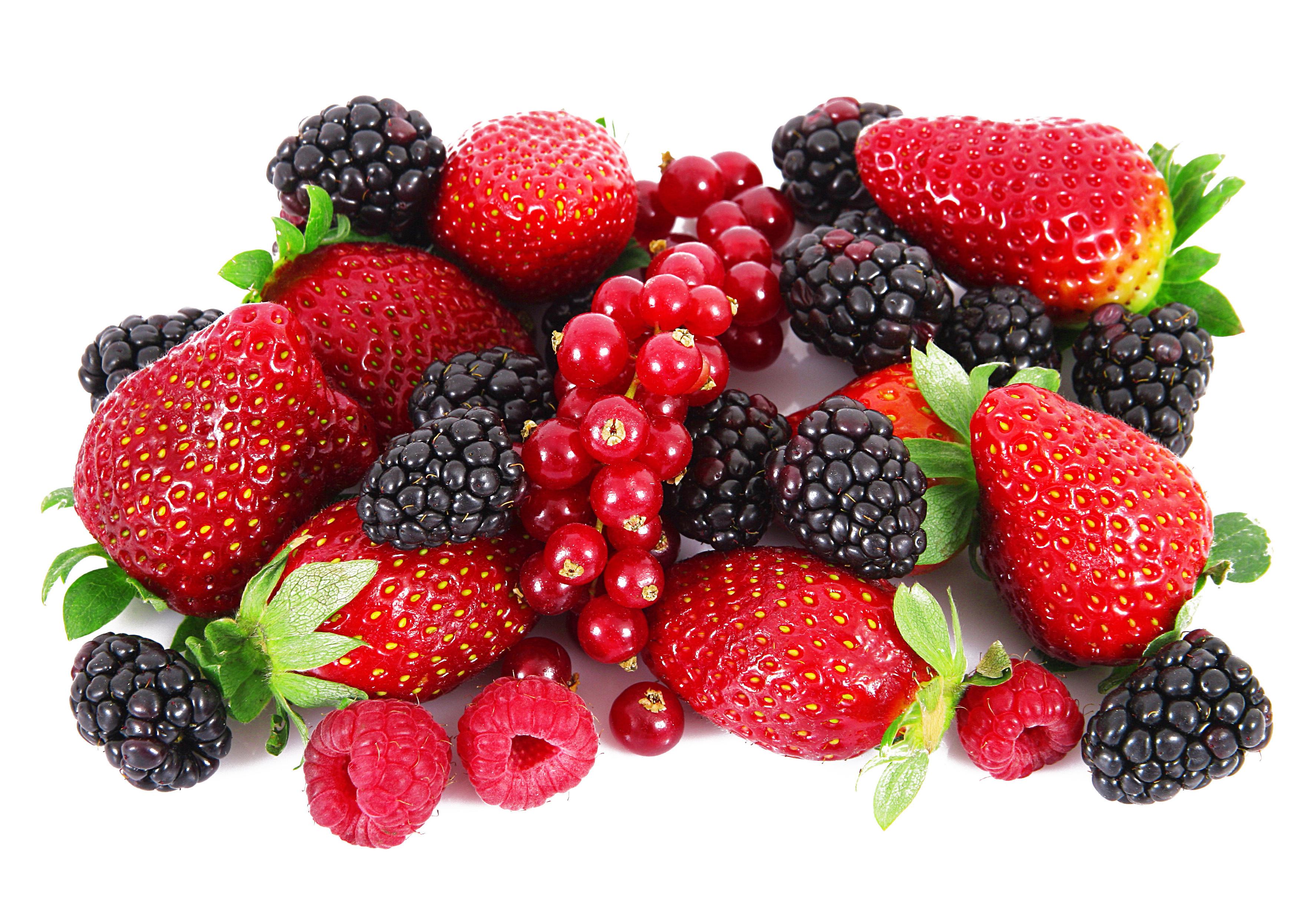 Малина смородина ягоды скачать