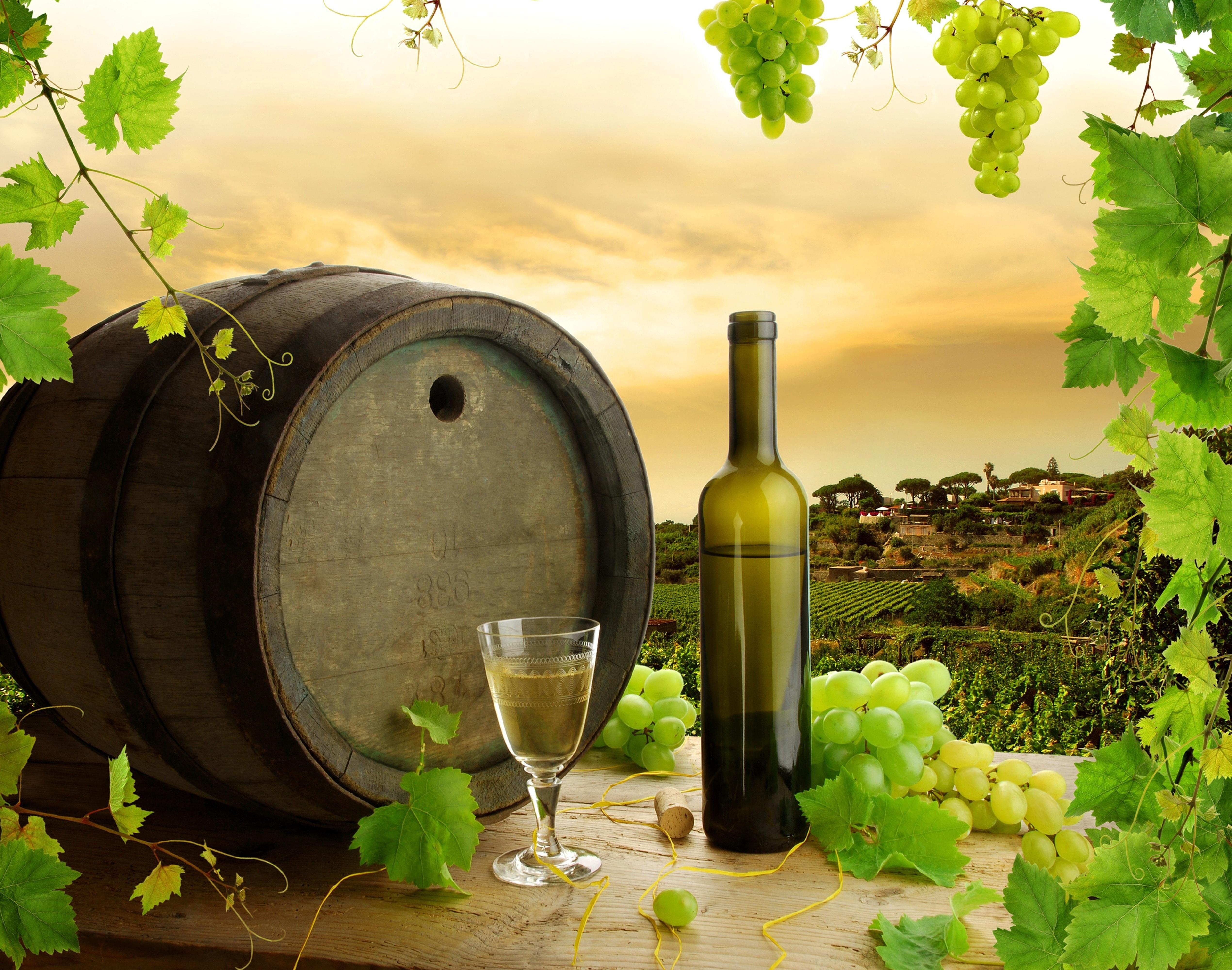 Вино виноград бочка загрузить