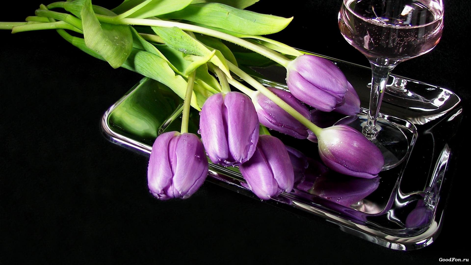 тюльпаны ваза море  № 1012876  скачать