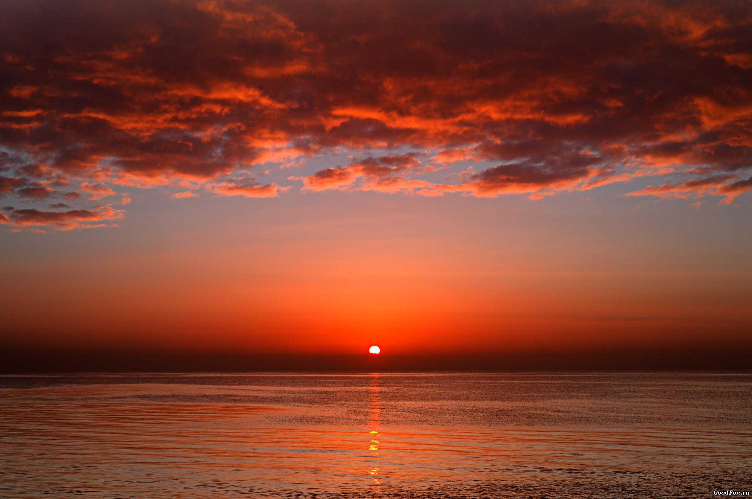 золотистый закат над морем  № 184566 без смс