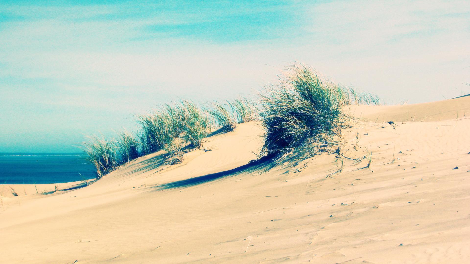 природа песок море пустыня nature sand sea desert загрузить