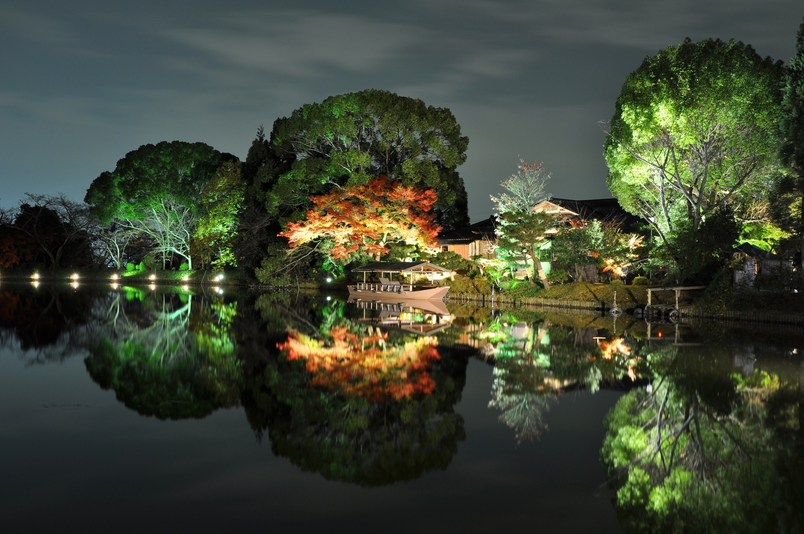 страны архитектура природа деревья ночь  № 3716888  скачать