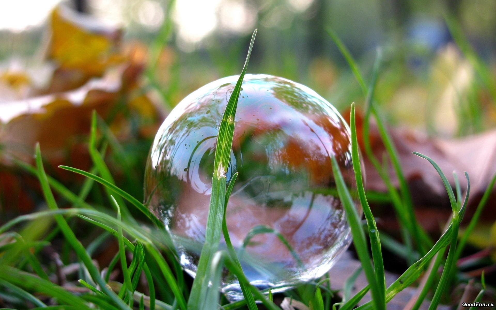 мыльные пузыри бесплатно