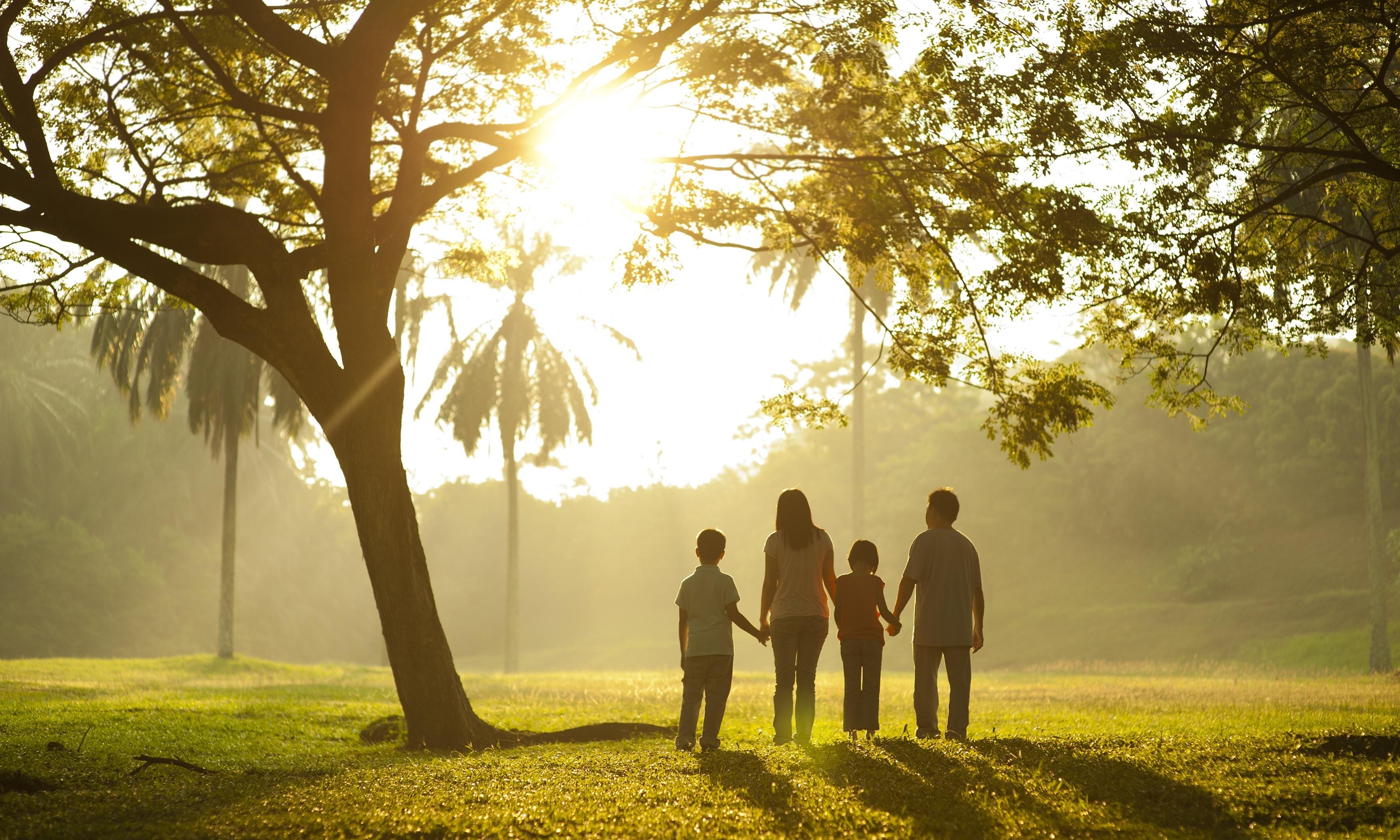 Семья на закате бесплатно