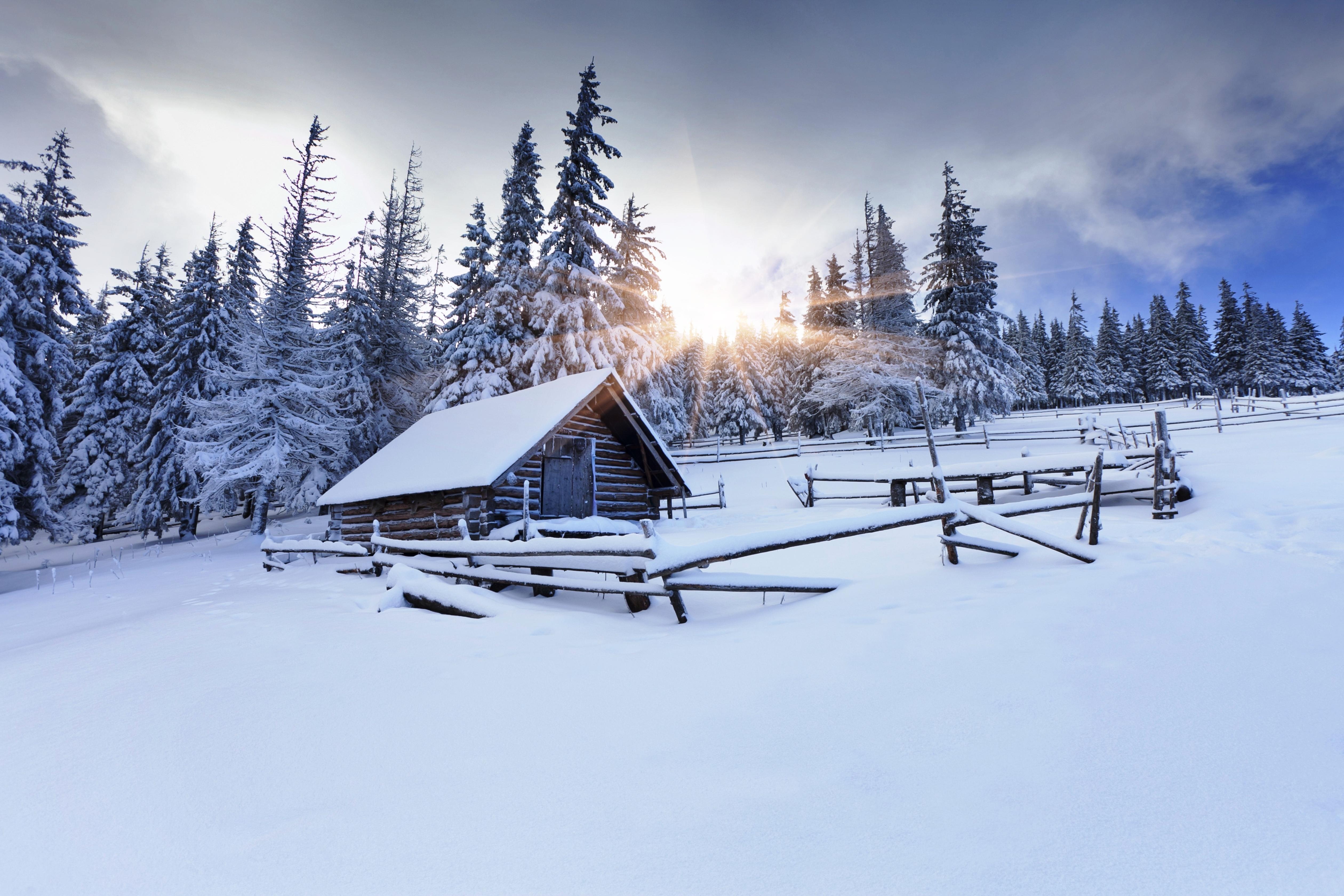 снег зима бревна загрузить
