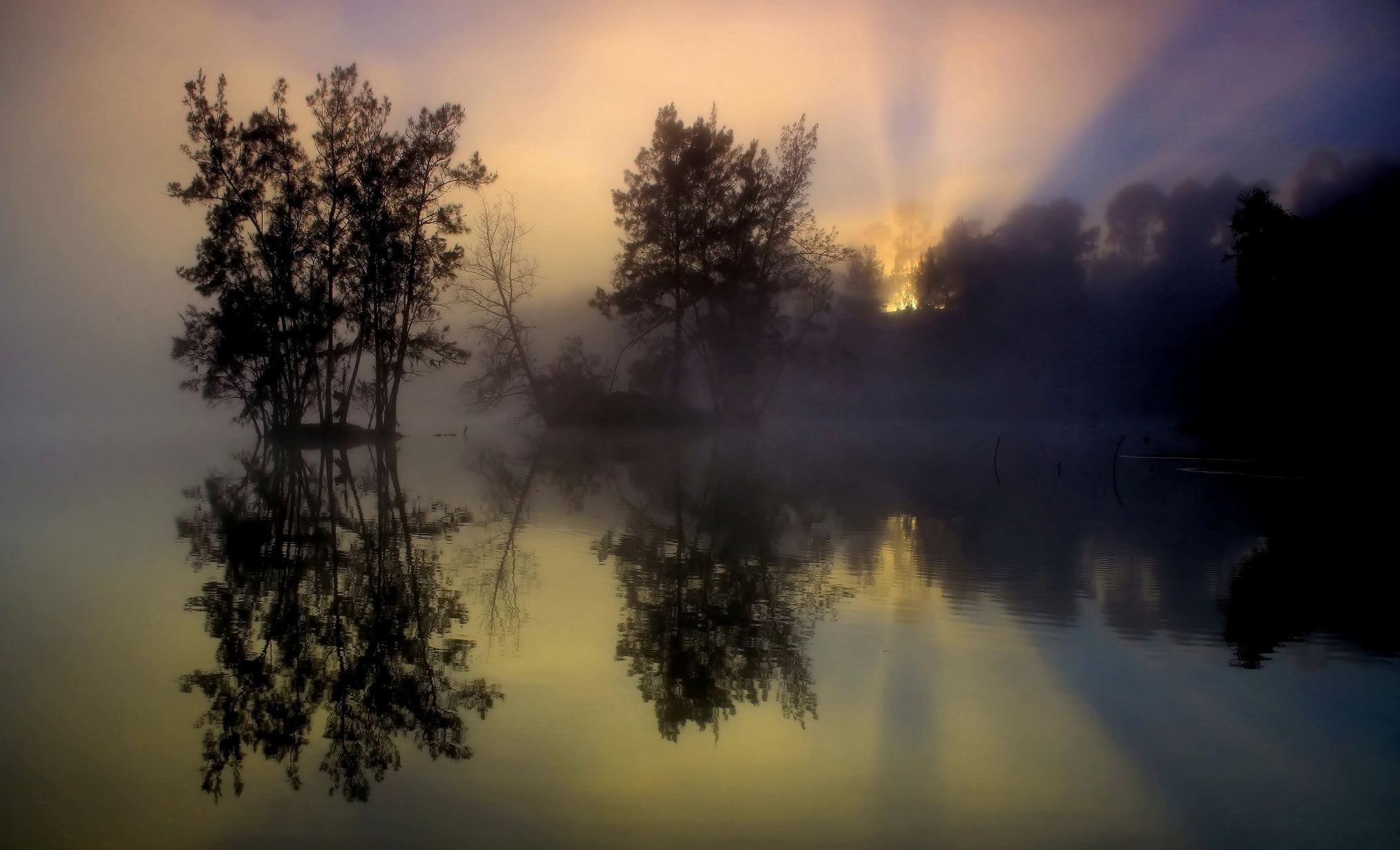 природа озеро отражение деревья вечер бесплатно