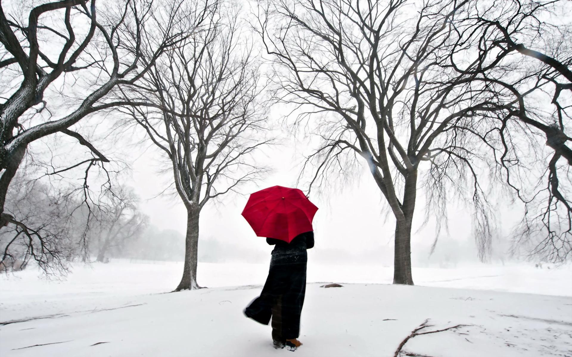 С зонтиком в лесу  № 3394159 без смс