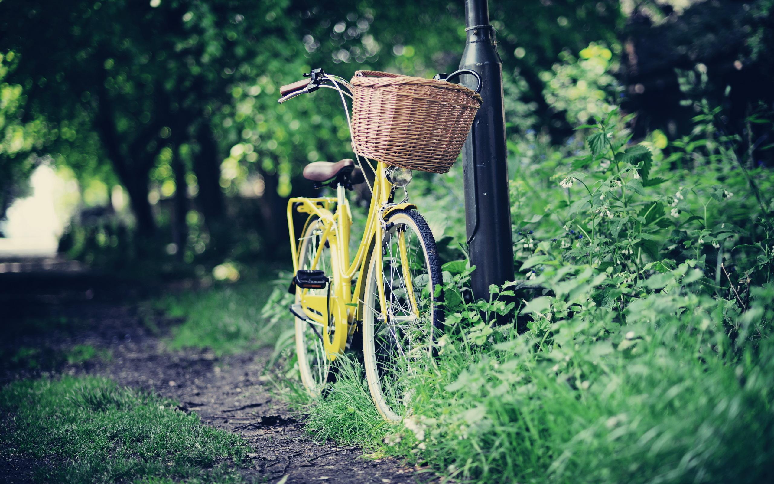 Велосипед в центре города без смс