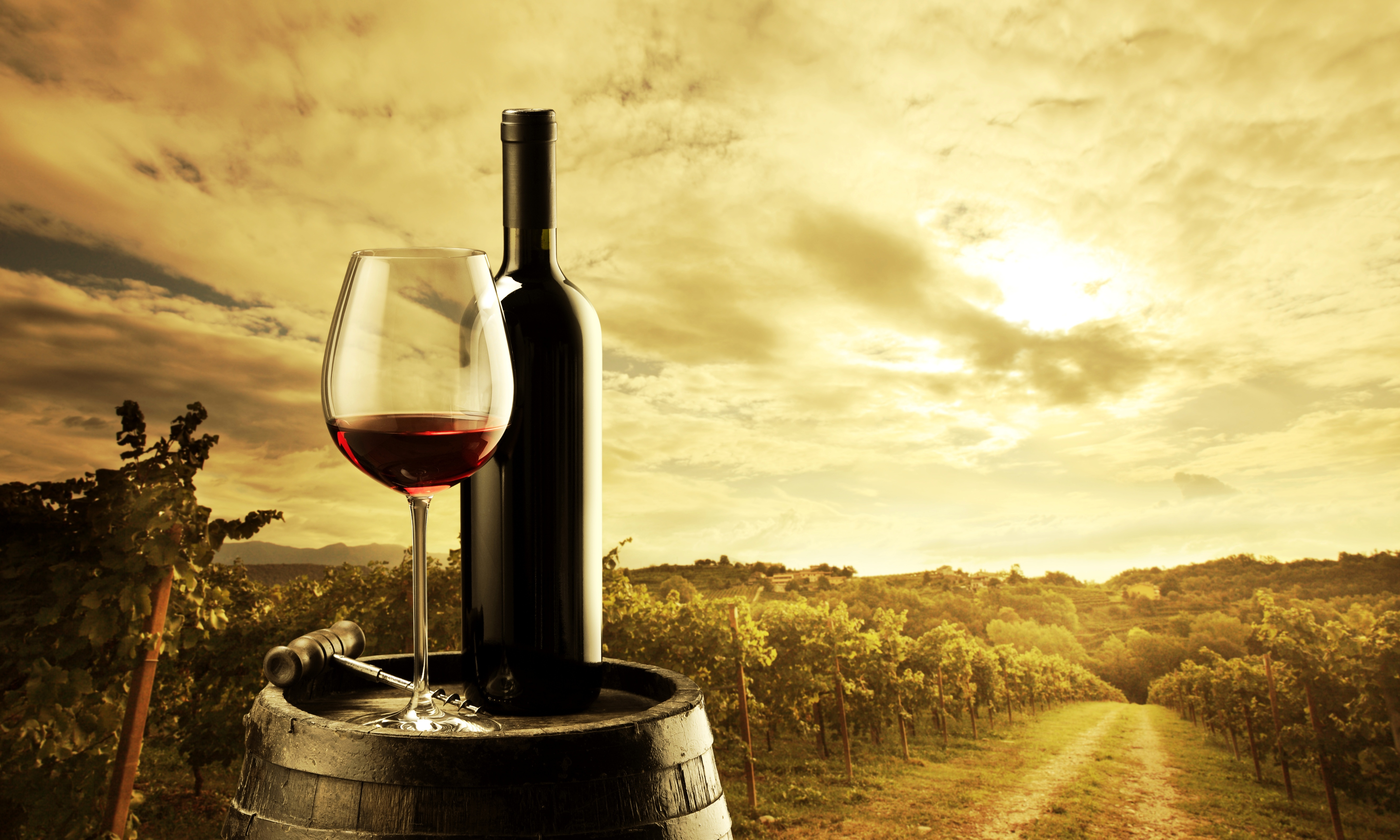 вино, бочка, скрипка, виноград бесплатно