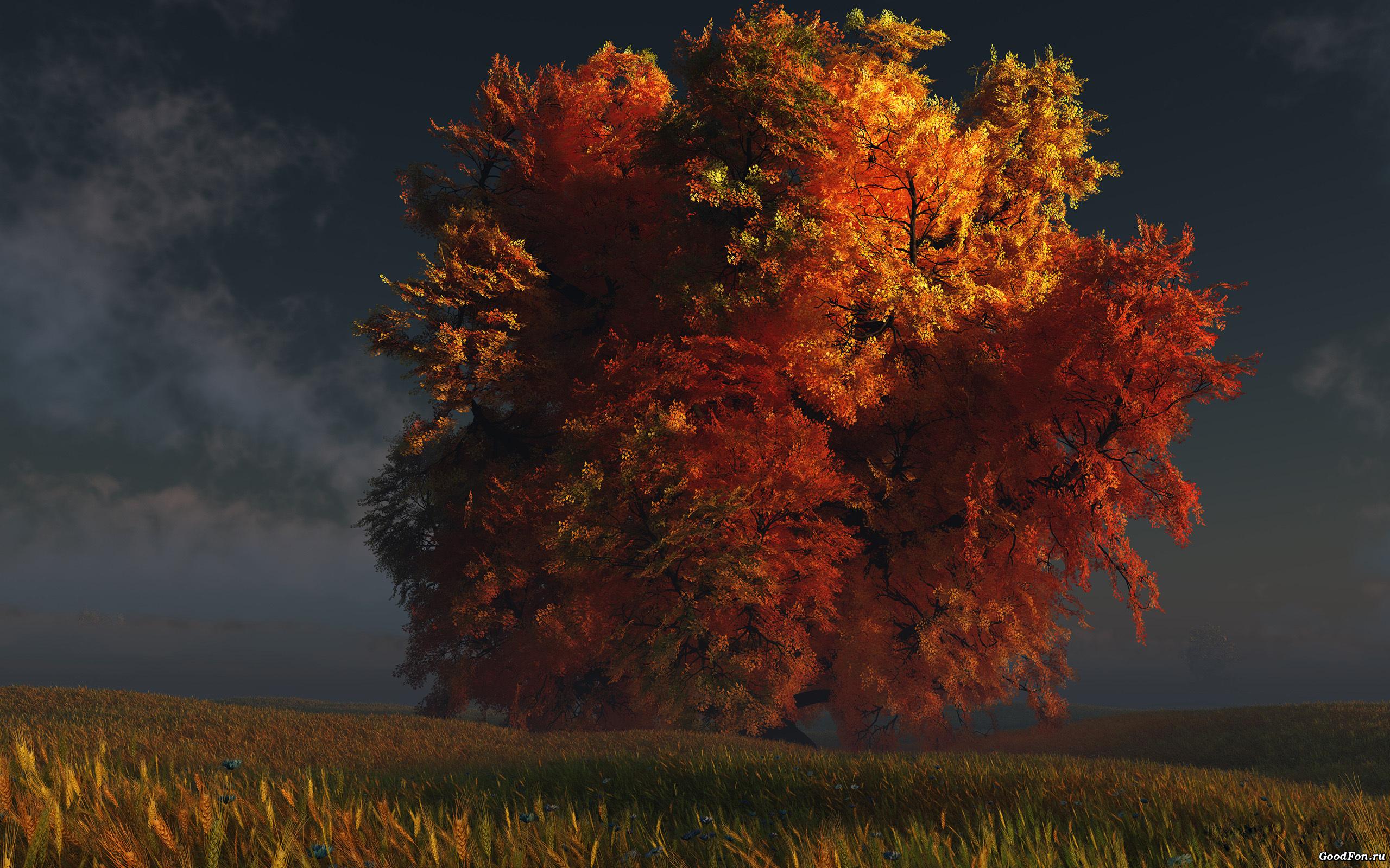 осеннее дерево скачать