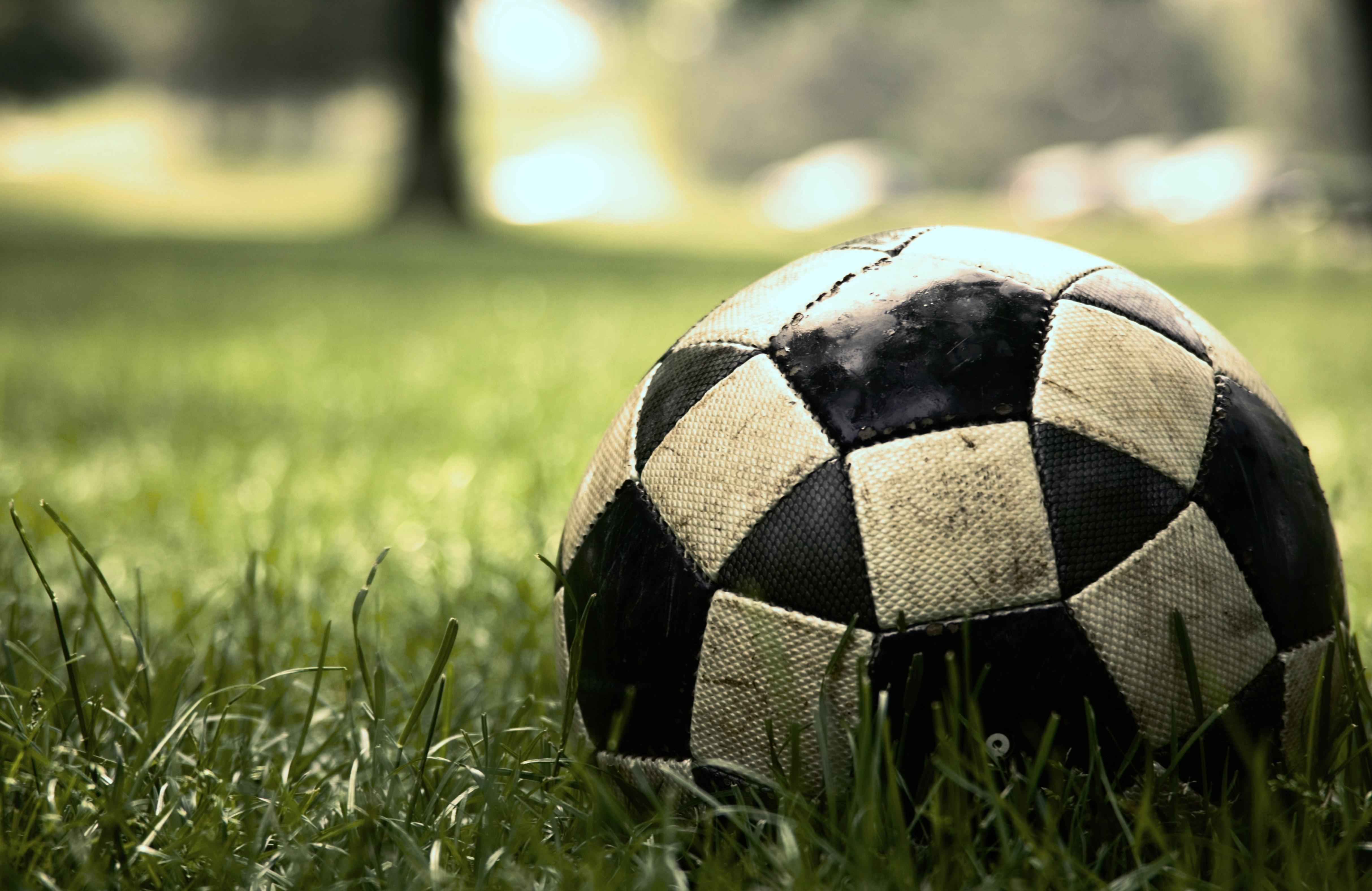 Мяч в сетке  № 1365547 бесплатно